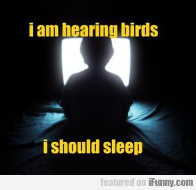 I Am Hearing Birds, I Should Sleep...