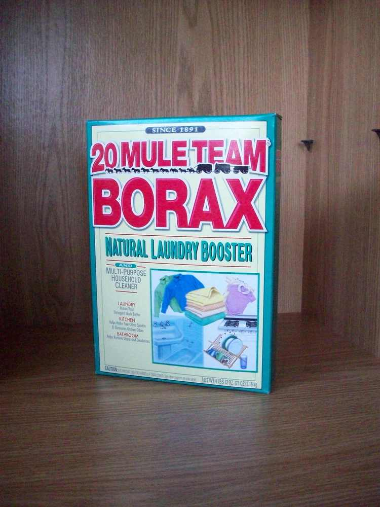 "1. Borax - Listed under ""ingredients"" as E285, you can still buy caviar in the US containing this well known cleaning product"