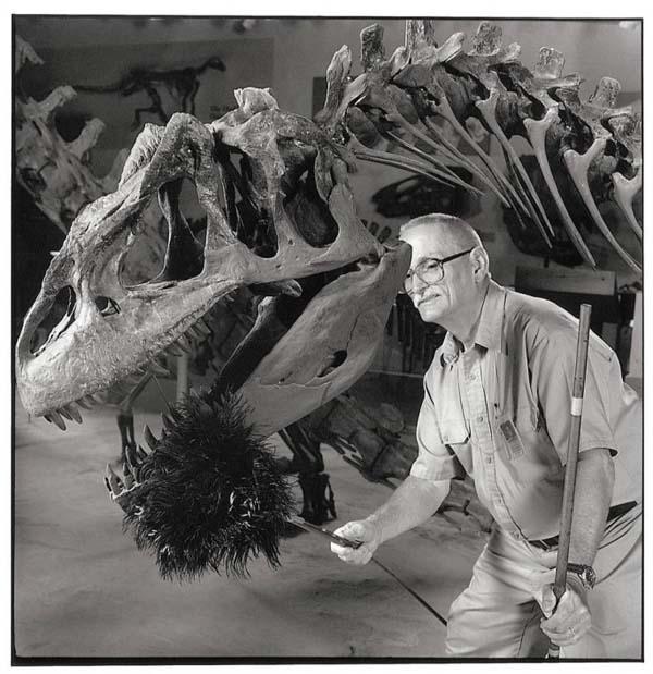 12. Dinosaur Duster