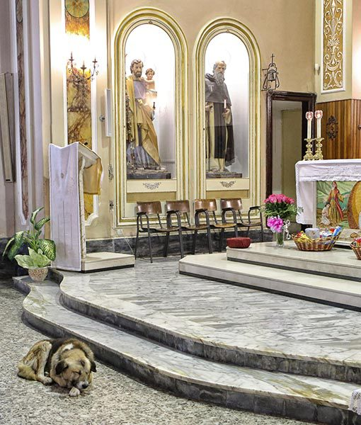 The reason Tommy attends Mass at this church is because it's where he last saw his owner.