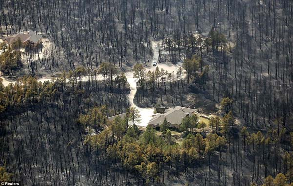 One house sits untouched by the Black Forest Fire in Colorado.
